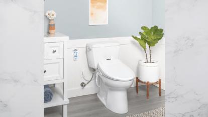 bathroom featuring a bidet toilet seat