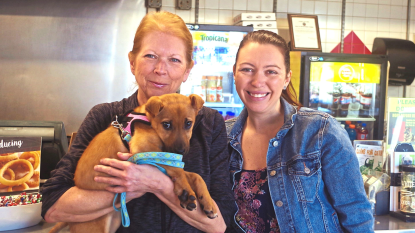 women with shelter dogs
