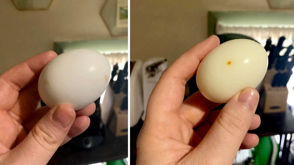 """Unpeeled and peeled egg after """"hard boiling"""" in the oven"""