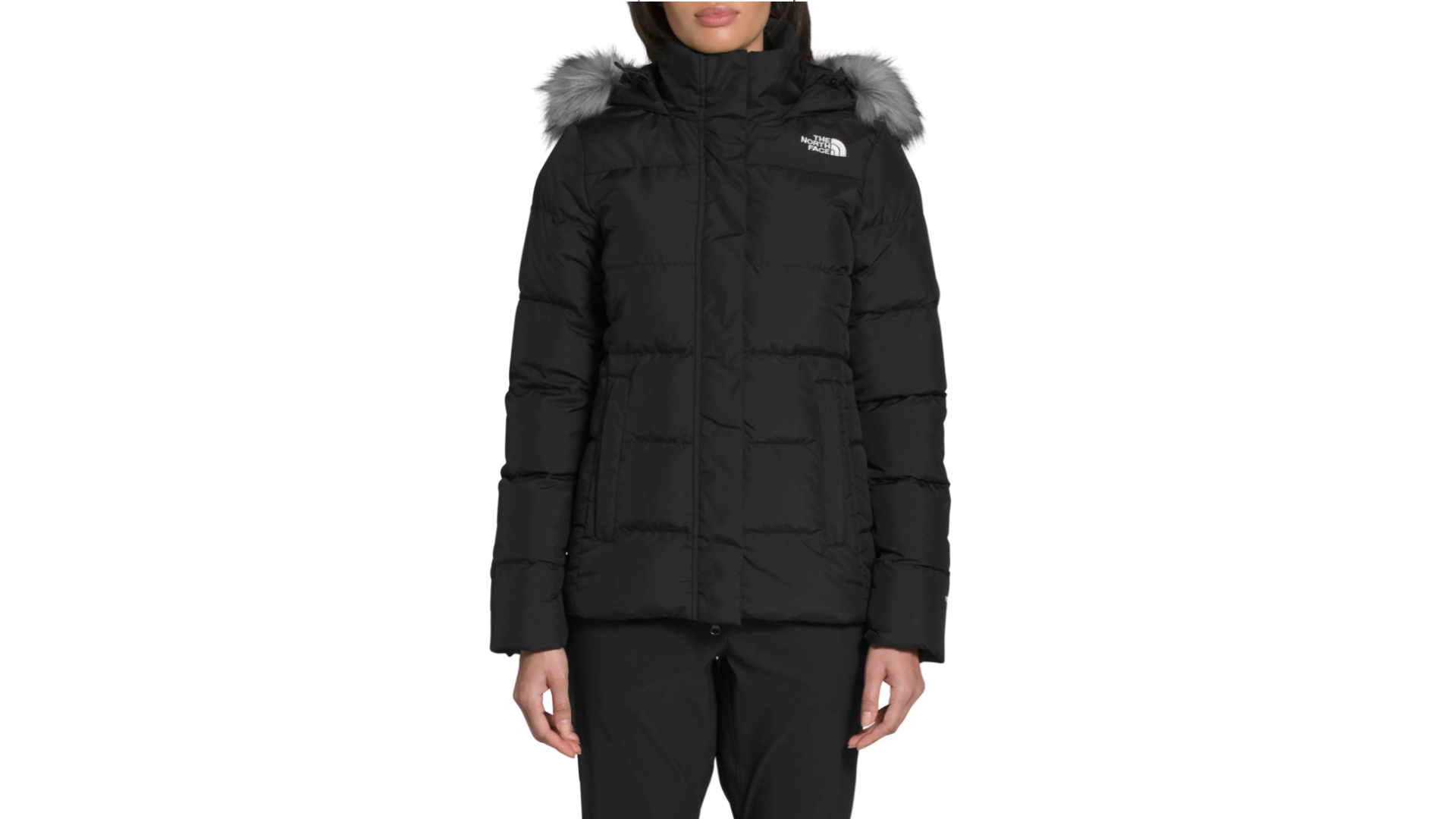 the north face down jacket
