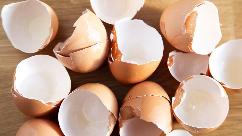 10 Brilliant Uses For Eggshells image