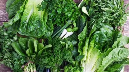Various types of lettuce