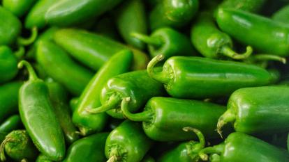 spicy-foods-herbs-seasonal-allergies