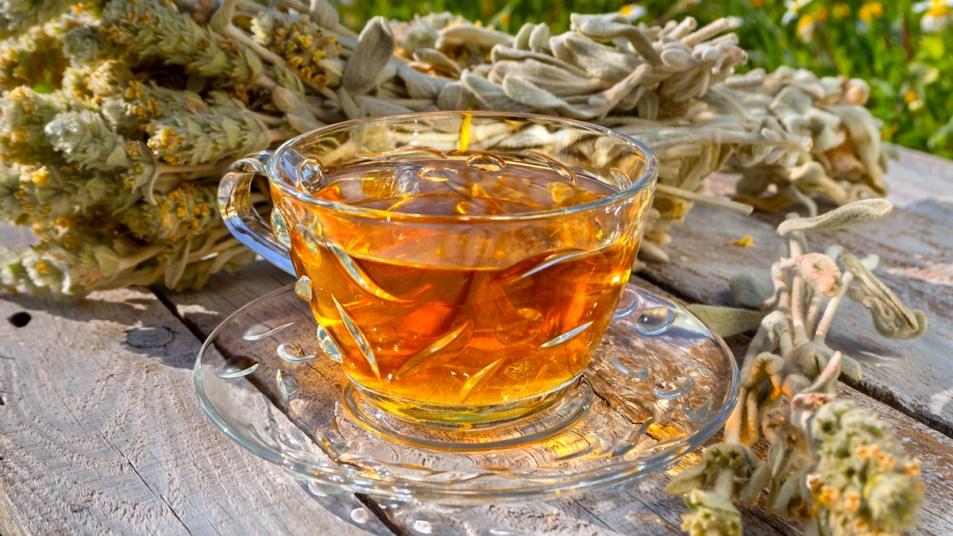 Greek mountain tea