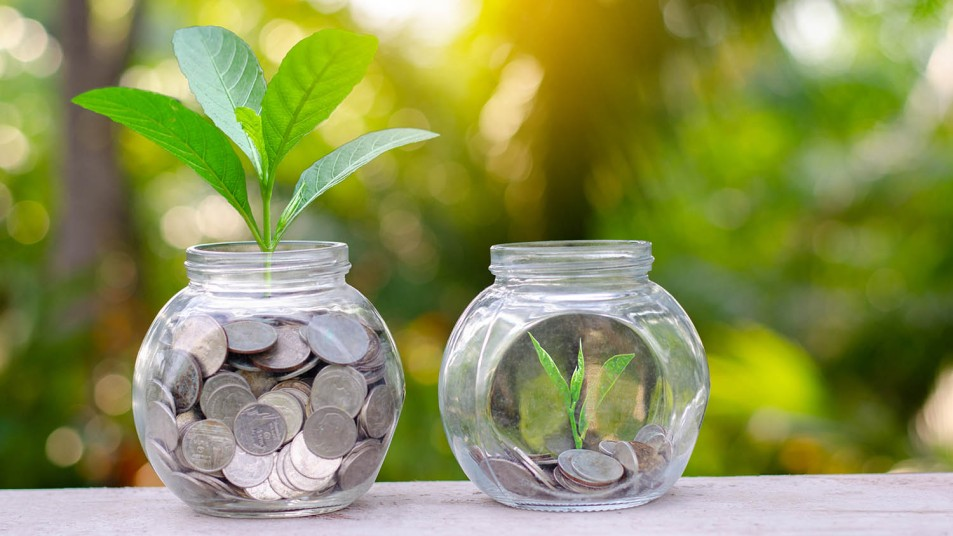 summer savings represented by coins in glass jars with seedlings sprouting