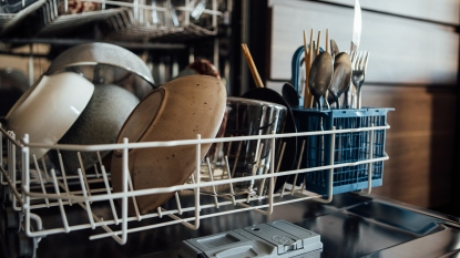 Dishwasher mag image