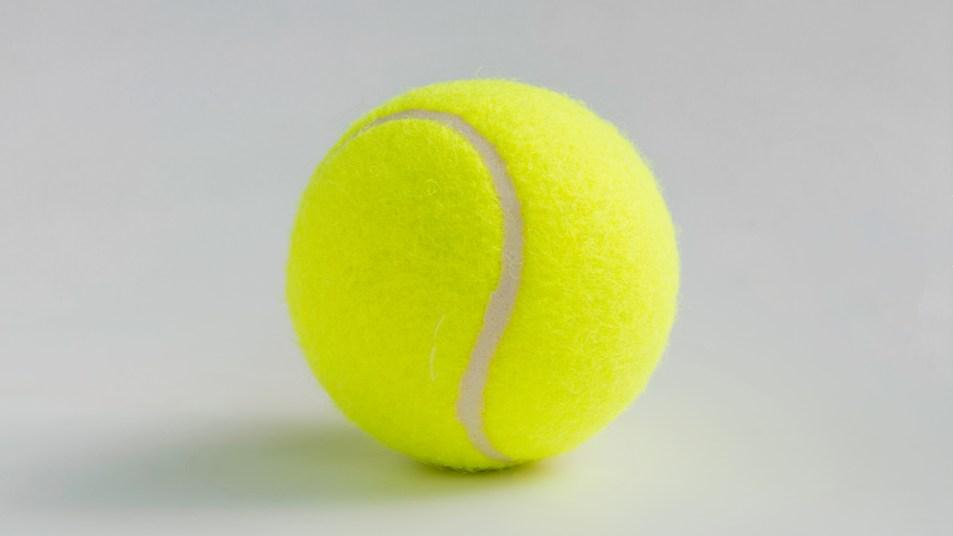 Tennis ball for household uses